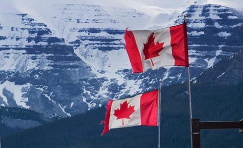 加拿大枫叶卡对上学学费有没有好处?