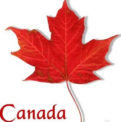 加拿大本科留学怎么转学分?