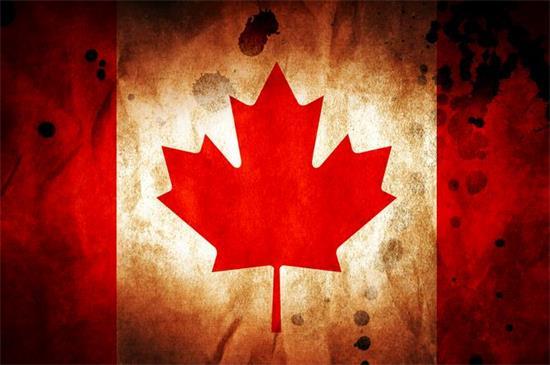 家庭主妇怎么办加拿大旅游签证?
