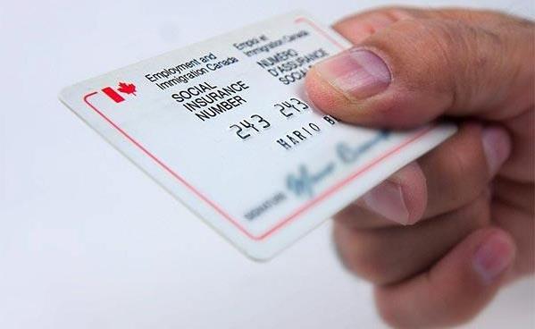 保留枫叶卡需要哪些证件(三)?SIN卡、雇主信、报税凭证