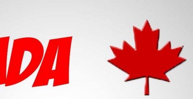 申请换领加拿大枫叶卡的要求